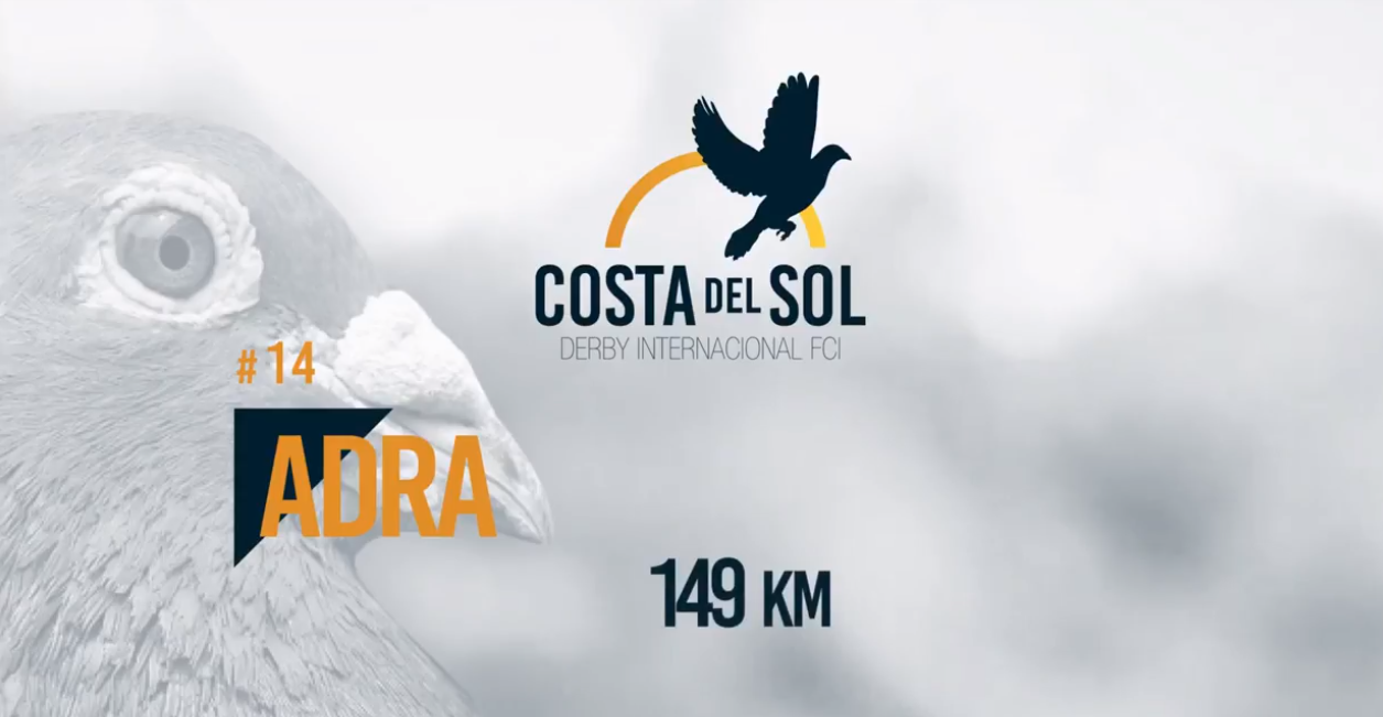 1ª CARRERA PUNTUABLE AS PALOMA (ADRA 149 KM)