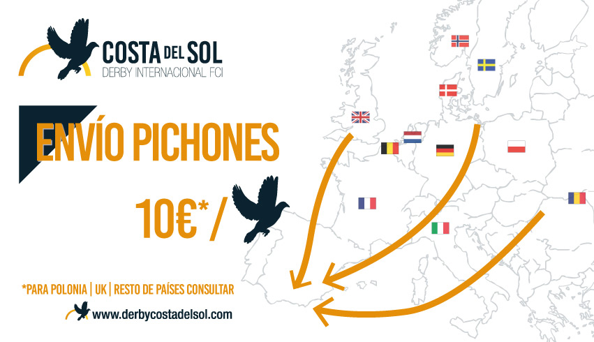 PIGEON COLLECTING IN EUROPA: ¡€10 PER BIRD!